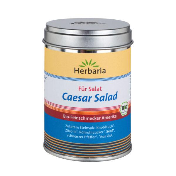 Caesar Salad Salat Gewürzsalz bio
